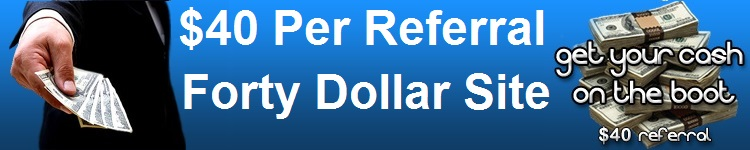 $20 Per Hour Earn Daily Pay Work at Home $40 Daily Cash Sites